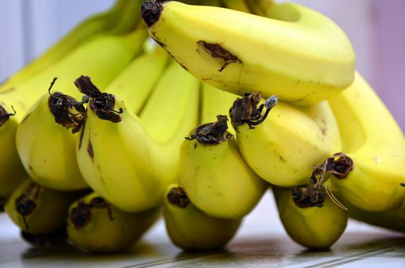 Addig egyen banánt, amíg teheti – hamarosan eltűnhet ez a gyümölcs