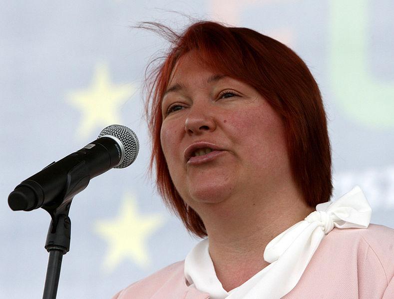 EU: újabb alelnöki helyet kapott egy magyar képviselő