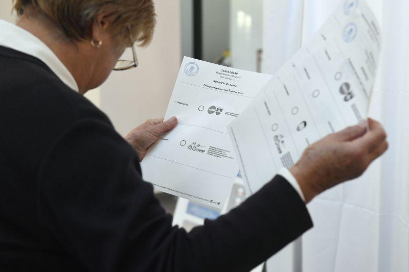 Nemzetközi megfigyelők is nézik a választás tisztaságát