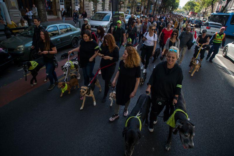 Kutyás Critical Mass volt Budapesten