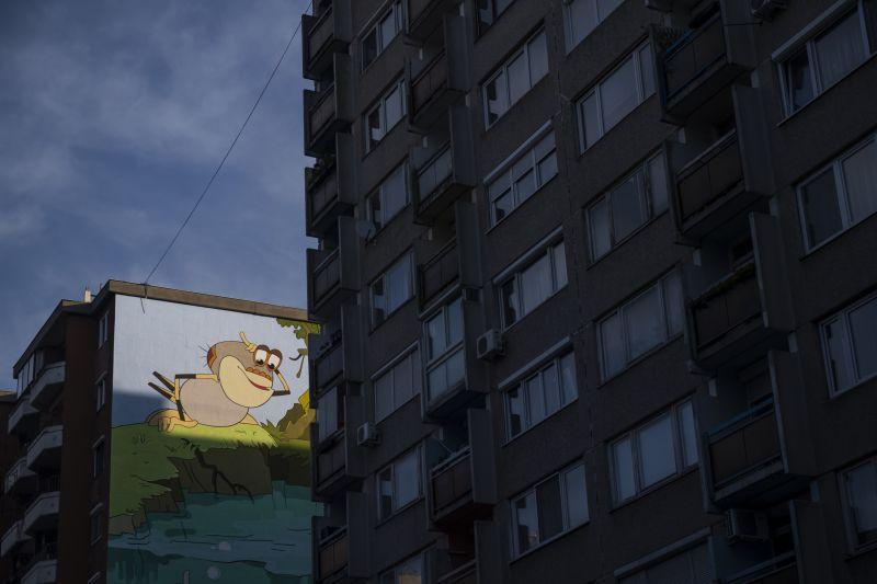Vizípók felmászott a falra a Józsefvárosban