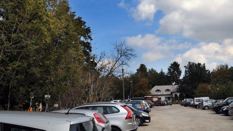 220 fát vágnak ki a Normafán egy parkoló miatt, pótolni sem kell az irtást