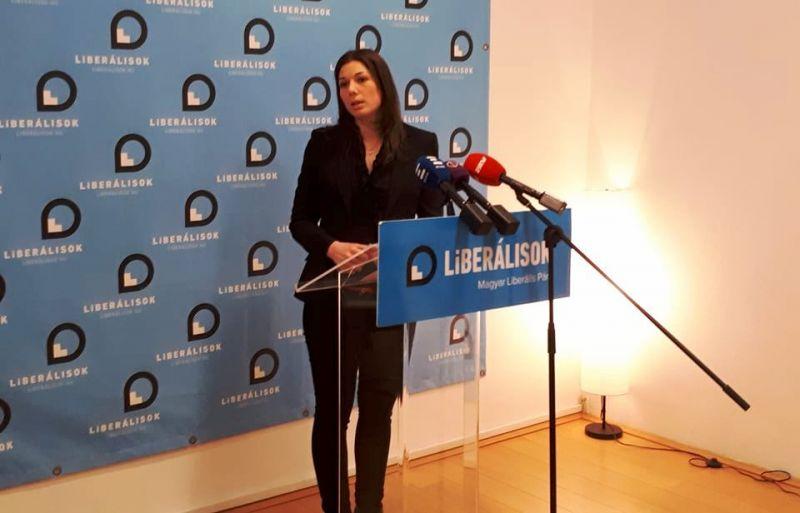 DK-s lett a Liberális Párt elnöke