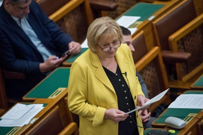 Mészáros erőművénél ülésezne a parlament fenntartható fejlődés bizottsága