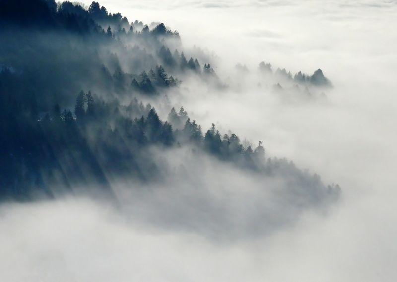 Nagyon óvatosan vezessenek, mert óriási ködre figyelmeztettek!