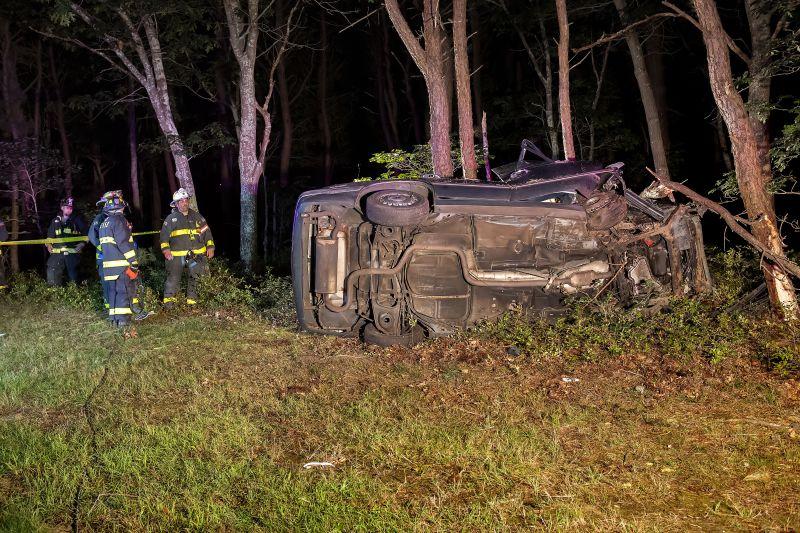 Fával ütközött az autó – a sofőr belehalt