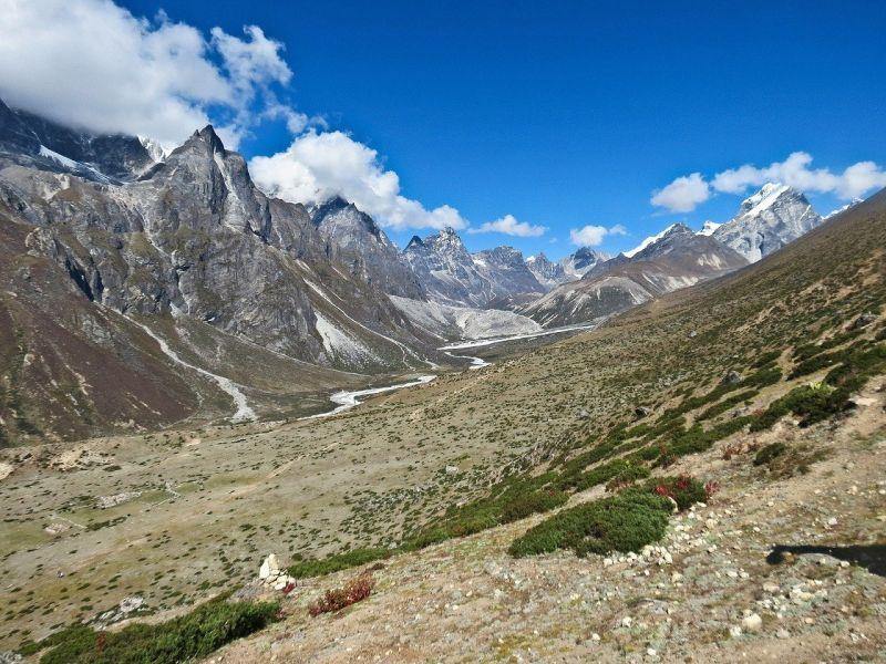 Egyre több növény él a Mount Everesten