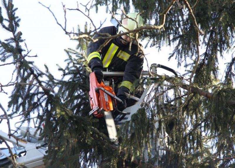Pusztít a vihar az országban: épületeket rongált meg, fákat csavart ki a szél