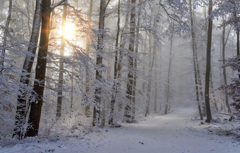 Március utolsó előtti napján néhány helyen havazni fog