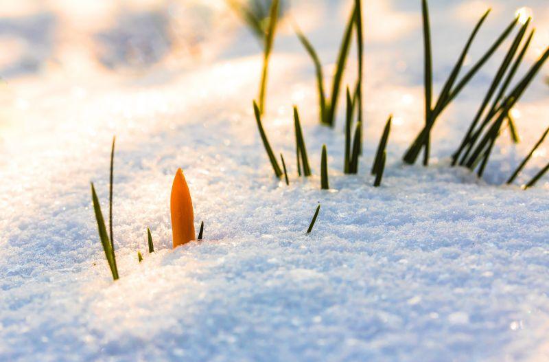 Havazás és mínuszok várnak ránk a napokban