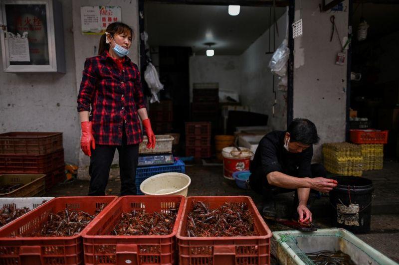 Többet nem lehet Vuhanban a vadon élő állatokat megenni