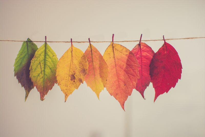 Jövő pénteken megérkezik az ősz