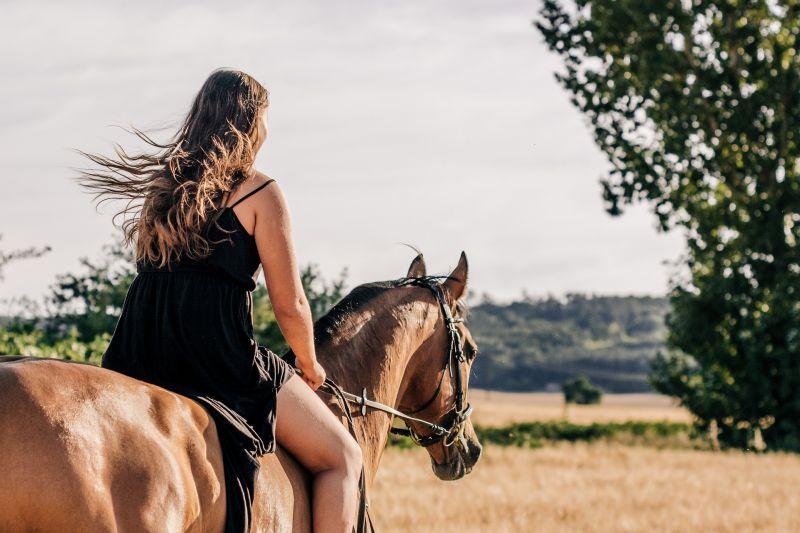 Bizarr baleset: elütöttek egy lovaglót Veszprém megyében – halálos áldozat is van