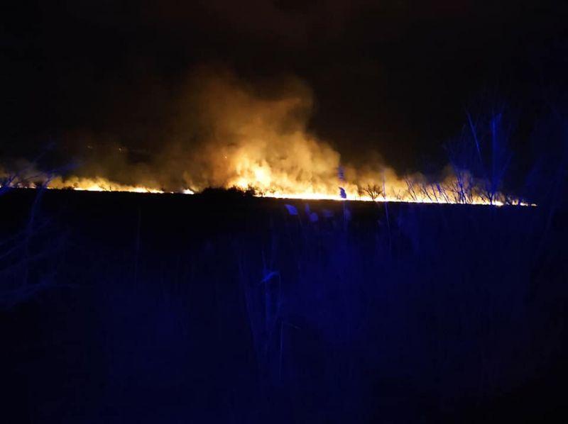 Elképesztő tűz pusztít a Balatonnál – videó