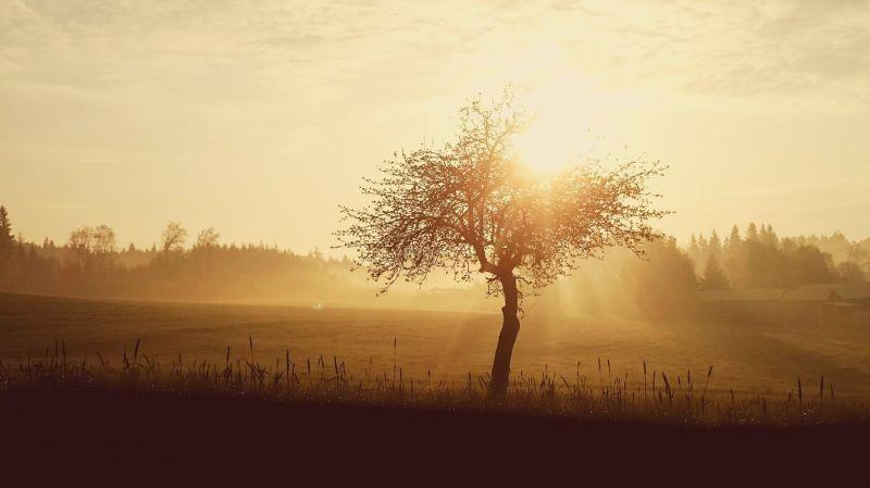 Szikrázó napsütésben akár 20 fok is lehet