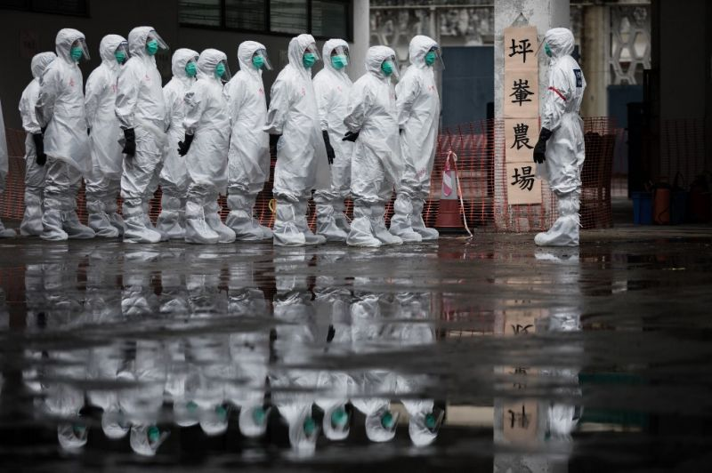 Itt a következő? Újabb állatról emberre terjedt vírus ütötte fel a fejét Kínában
