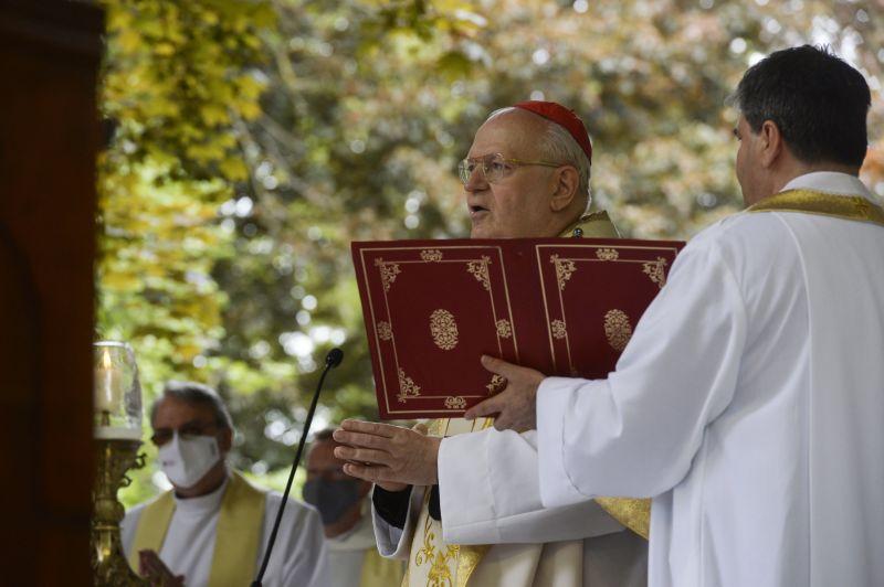 Papokat szentel fel a katolikus egyház, földre is kell borulniuk