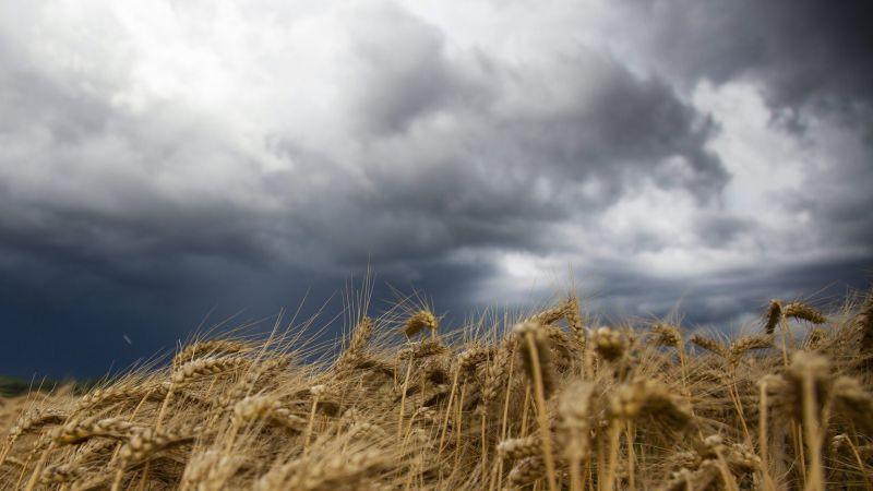 Már Csehországban pusztít a vihar – tízezrek maradtak áram nélkül