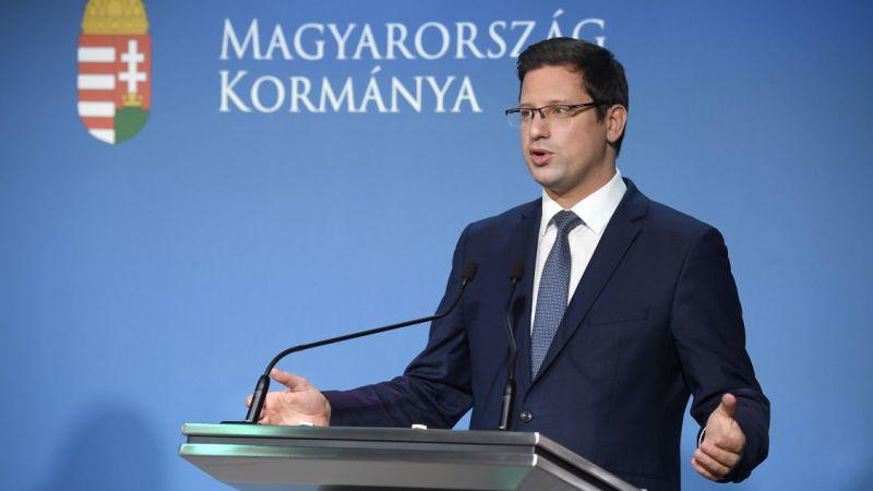 Két új vírusmutánst mutattak ki 15 magyar fertőzöttnél