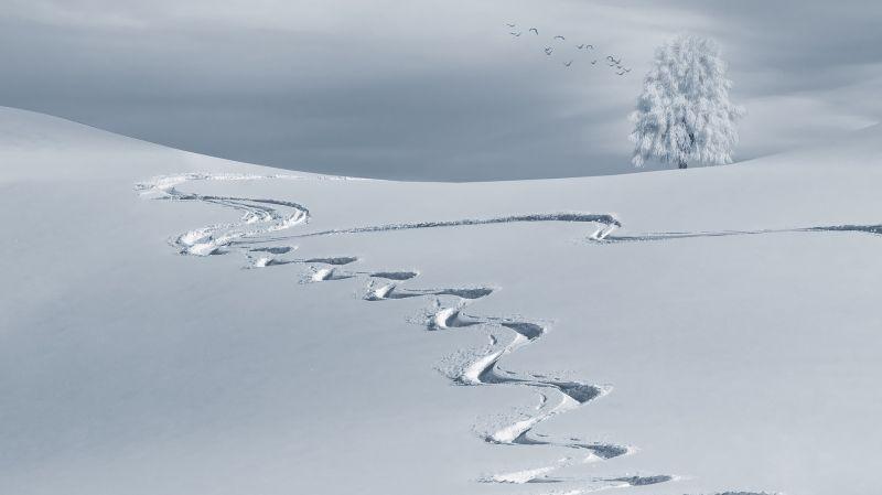 Akár 4-5 centi hó is eshet reggelig – leesett a hó a Mátrában és a Bükkben