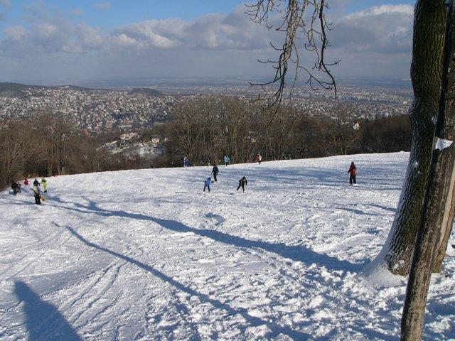 Ovisokat mentenek a Normafáról a havazás miatt